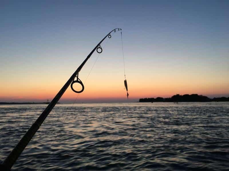 noleggio barche da pesca